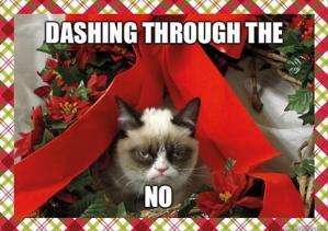 Grumpy cat, holidays, Santa, Santa Claus, cute, funny, cats