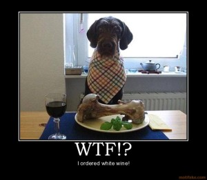 WTF, Dog, parenting, demotivational, funny, dads, toddlers, dadandburied, whining, kids, discipline, moms, health